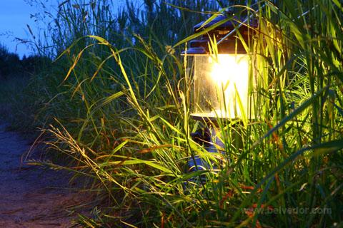бензиновые горелки и лампы